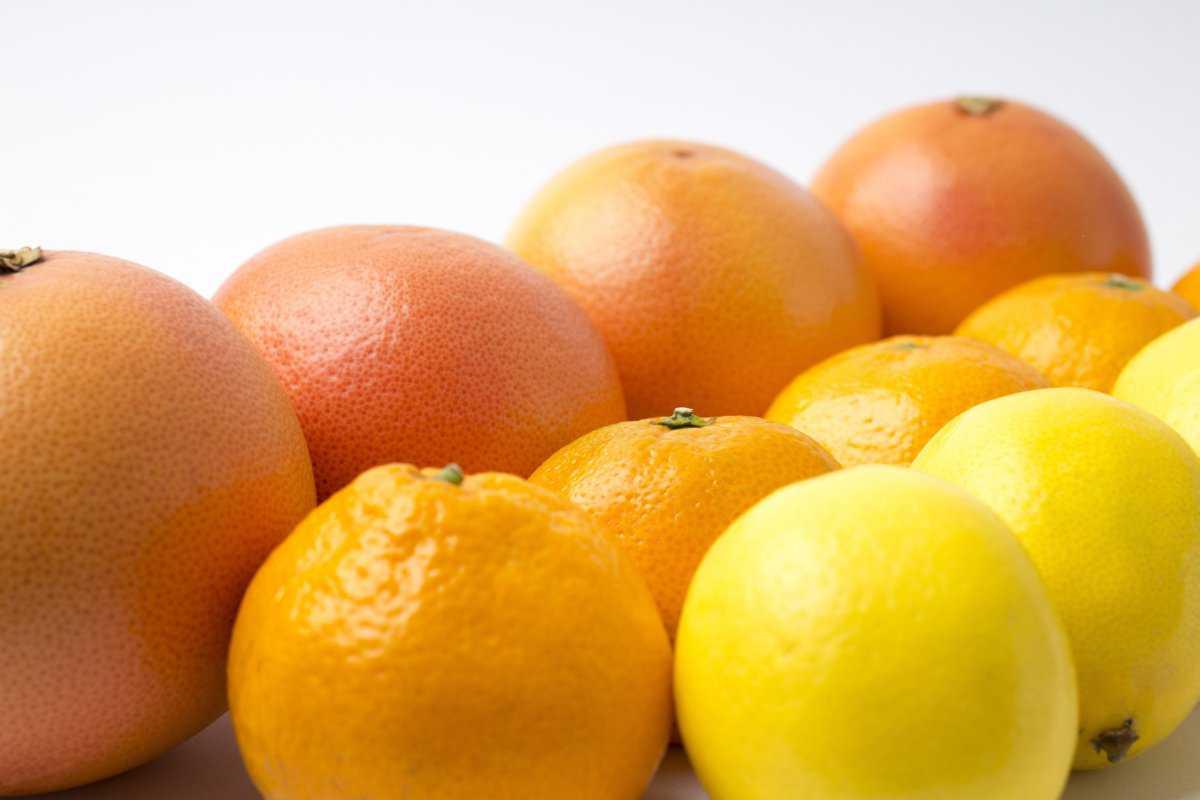 季節の生果物詰合わせ